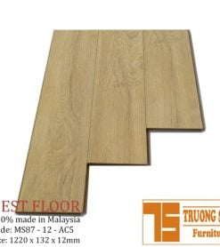 Sàn gỗ BestFloor Ms87