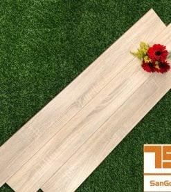 Sàn gỗ Maxstar M605